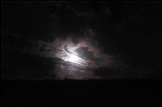 Luna Negra Tauro 1(1)