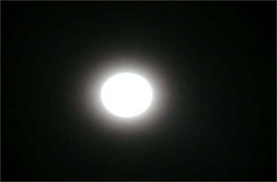 Temor Luna Negra 1(1)
