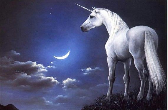 Unicornios 1(1)