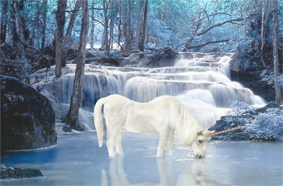 Unicornios 2(1)