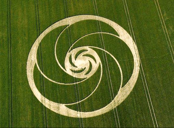 Circulo Cosecha
