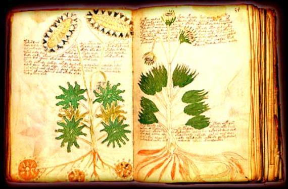 manuscrito de Voynich 2 (570x375)